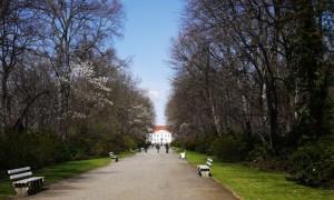 Tierpark_Schloss-©-A.-Ihlenfeld