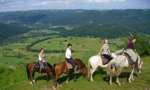 Wanderritt-Limousin-artikel