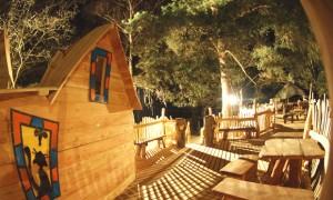 Baumhaus-Café-bei-Nacht-artikel