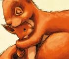 Bilderbuch für Kinder ab 4 Jahre Eichhörnchen Waldtiere