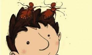 Läusealarm Kinderbuch Kopflausbefall arsEdition-Cover