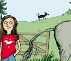 Kinderbuch ab 8 Jahre: Hedvig! Im Pferdefieber