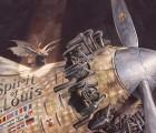Kinderbuch-Tipp im HIMBEER Familienmagazin: Lindbergh von Torben Kuhlmann