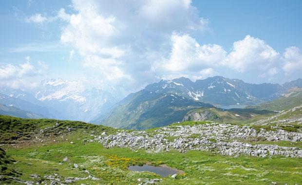 Titelgeschichte: Auszeit auf der Alp