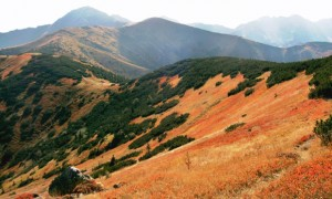 Landschaft-tatrawandern-Artikel