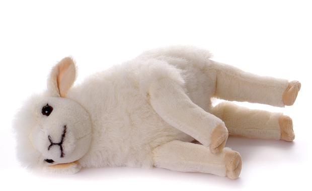 koesen-lamm-4
