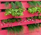 Palettenbeet für den Balkon | HIMBEER Magazin