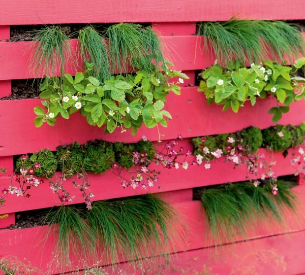 Ein Palettenbeet für den Balkon | HIMBEER Magazin