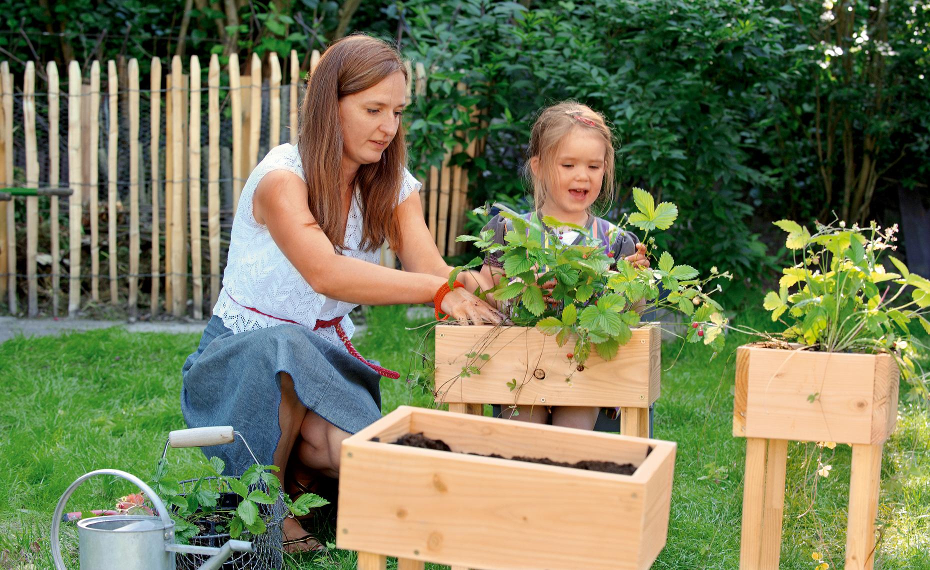 diy ideen ein hochhaus mit erdbeeren bauen himbeer. Black Bedroom Furniture Sets. Home Design Ideas