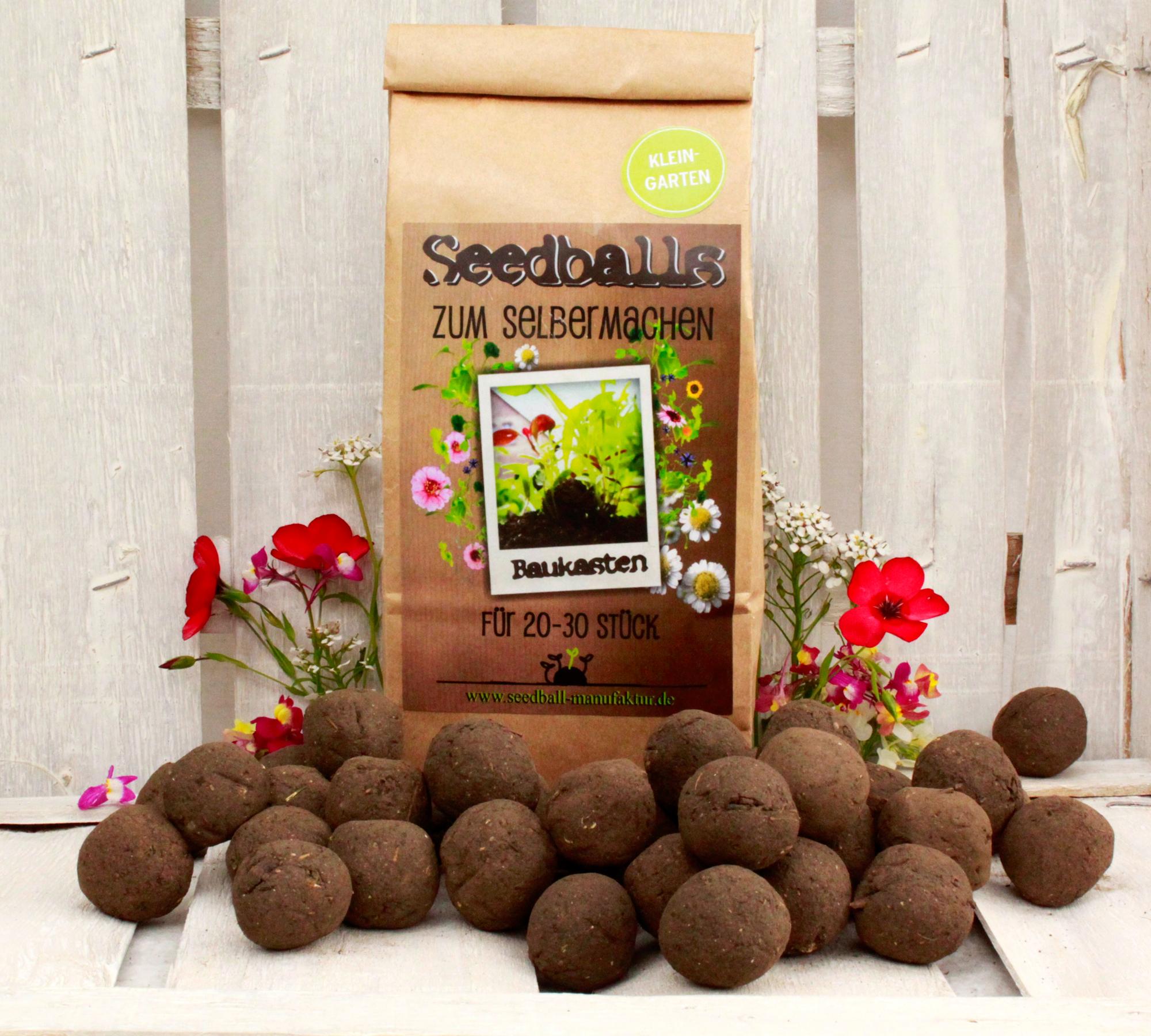 Seedball Mischung zum Selberherstellen | HIMBEER Magazin