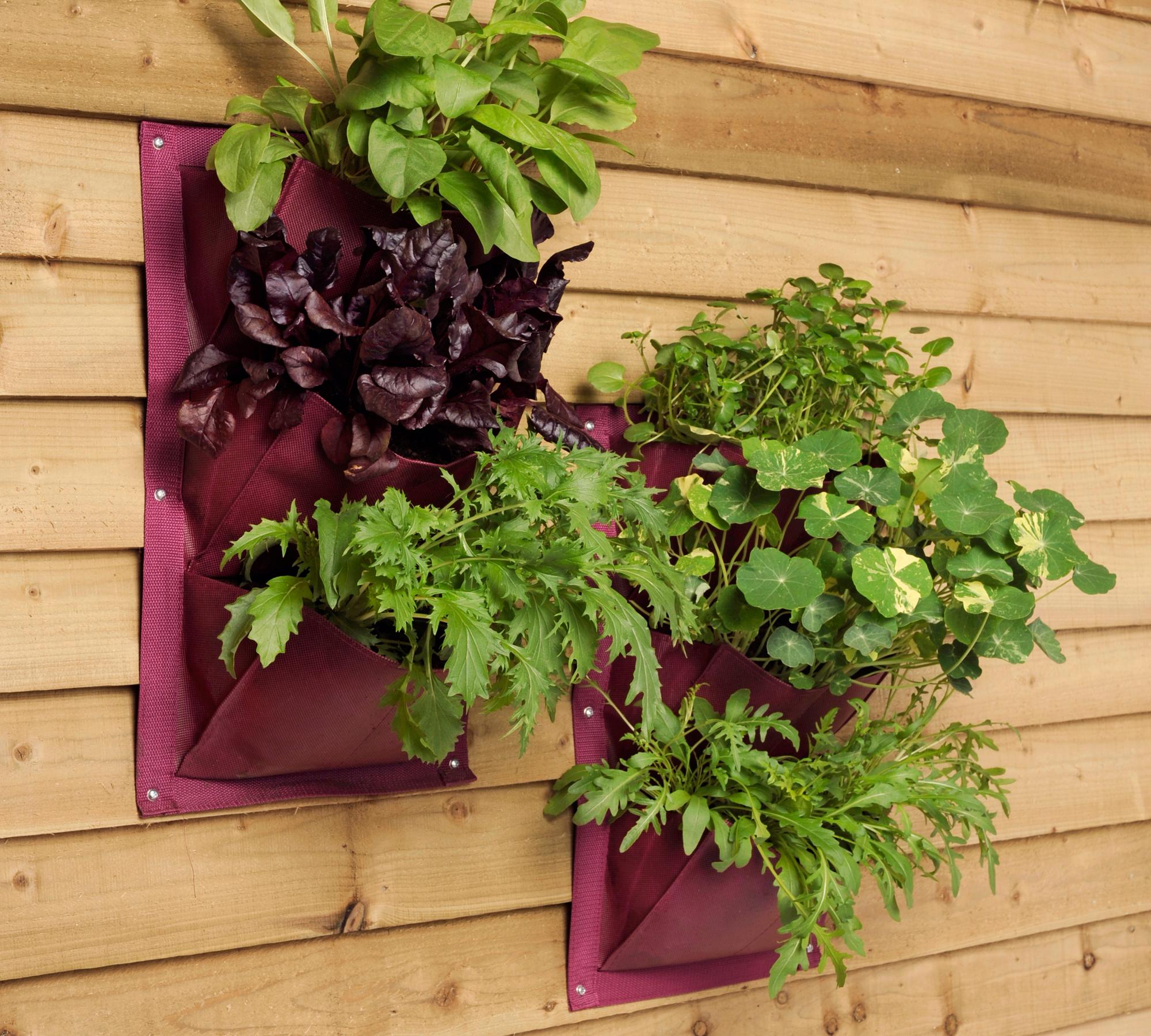 Pflanztasche für die Wand | HIMBEER Magazin