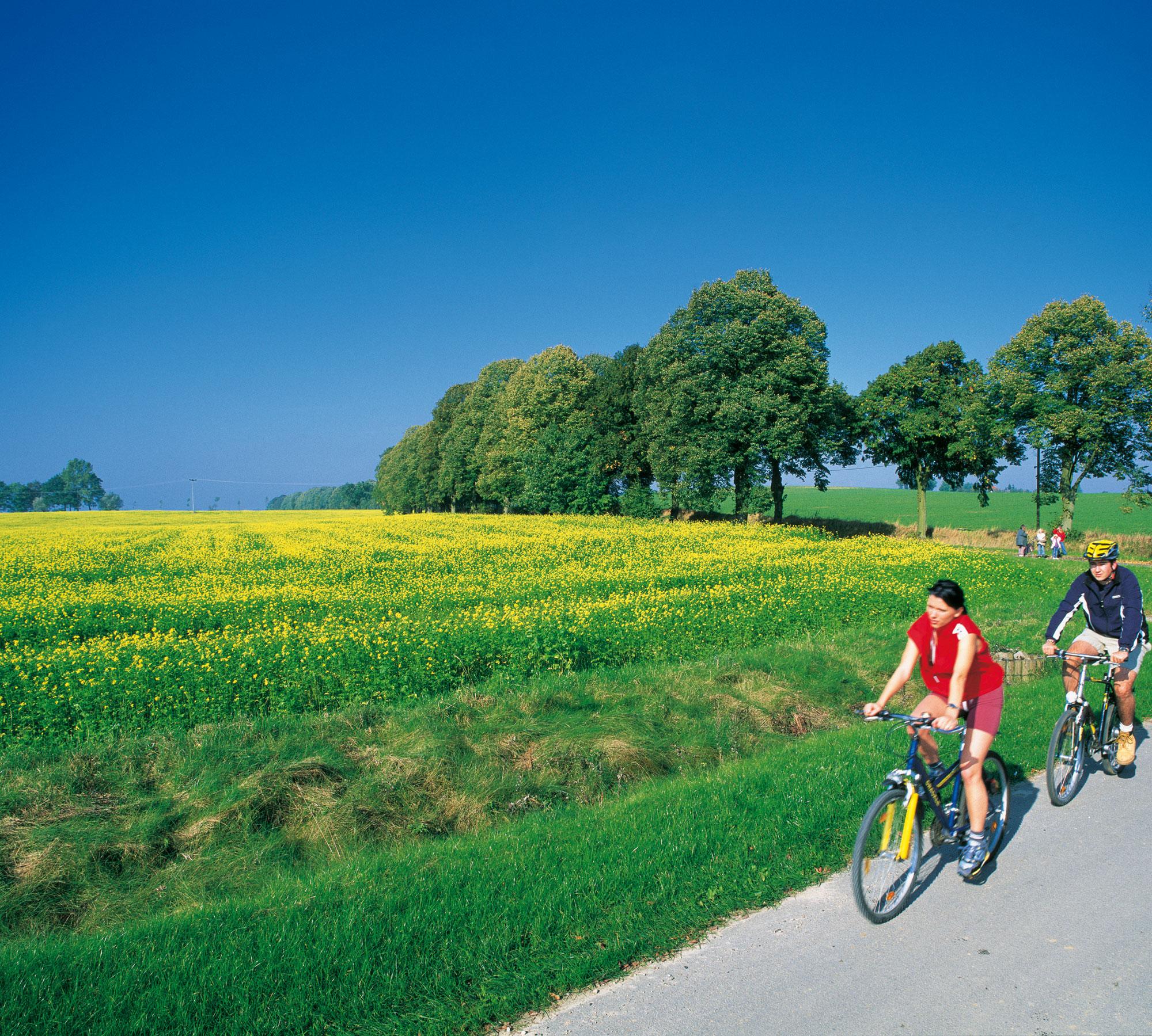Auschnitt der Fahrradstrecke | HIMBEER Magazin
