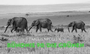 Familienpolitik | HIMBEER Magazin